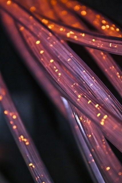 câble réseaux web neris