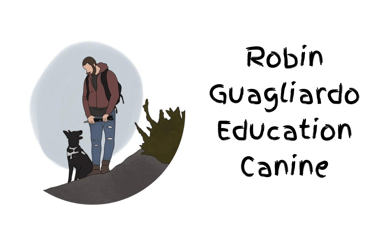 Education Canine Nice