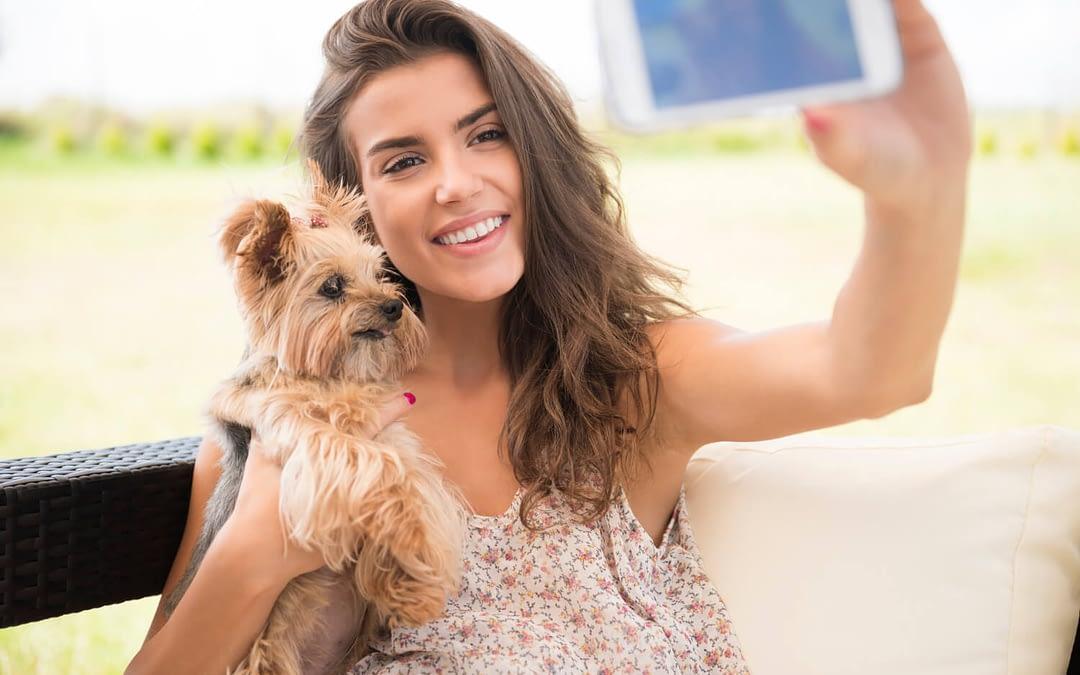 Les réseaux sociaux et les chiens